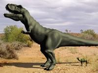 3d model hi-def t-rex