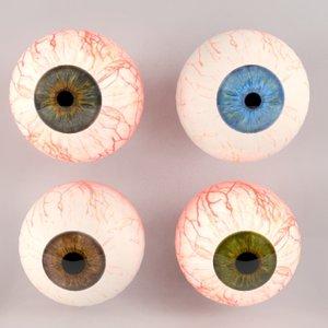 3d model human eyeball eyes
