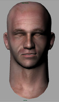 3d head mesh color normal maps model