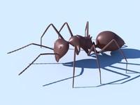 Ant.obj
