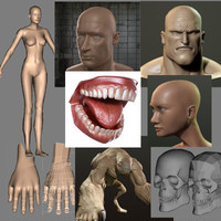 3ds max aaa 2001-2007 beast female body