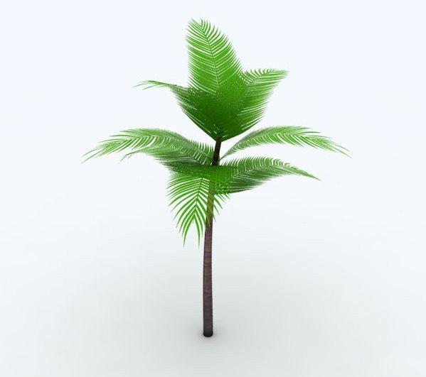 3d king palm model