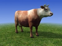 brown Cow 3D Model