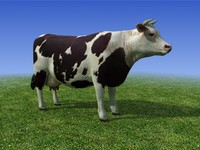 Black and white Cow 3D Model