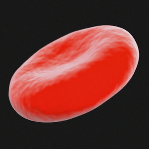 red blood cell microscopic 3d max