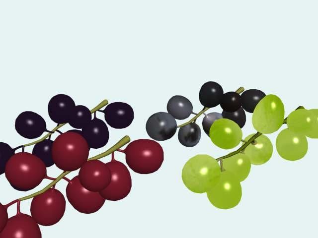 3d grapes wine