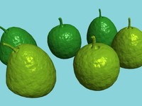 3d max fruit guava