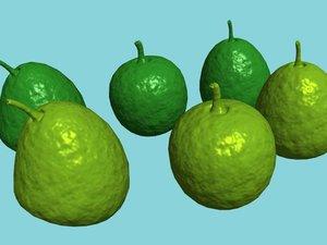 3d max fruit guava