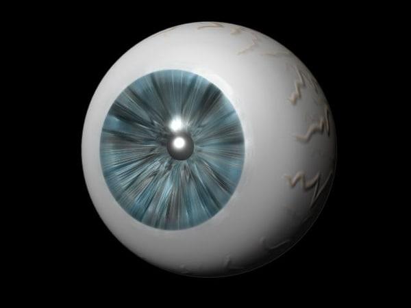3d eye model