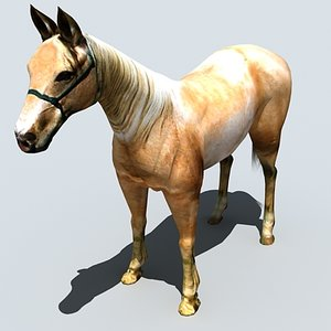 3D Horse 2