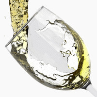 white wine pouring glass liquid 3d model