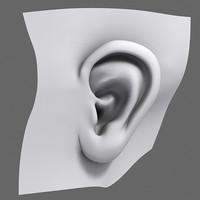 3d model human ear