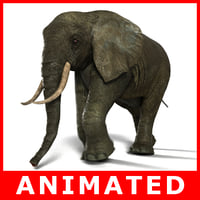 Elefant manipuliert und animiert (High und Low Poly)