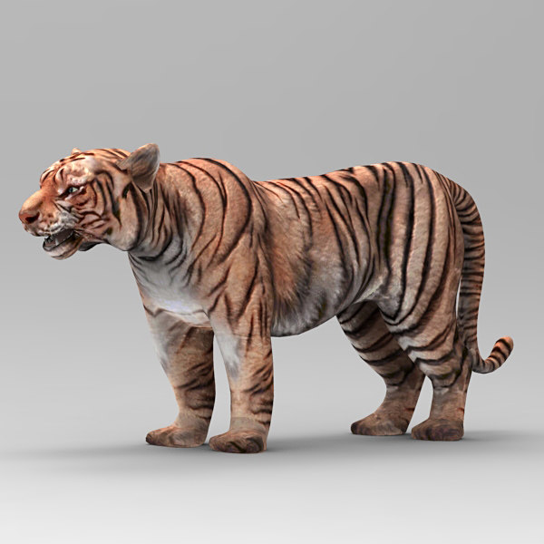tiger cat 3d 3ds