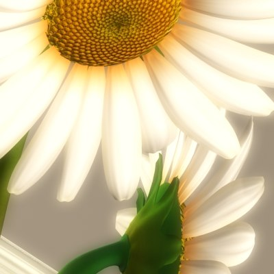 3d model daisies vase
