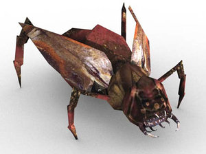 3d insect model