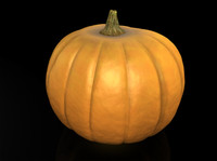 3ds max pumpkin vegetable