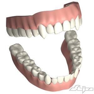 teeth obj