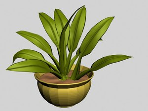 3d house plant