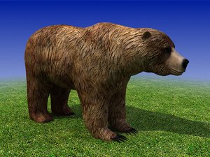 Grizzly Bear Low Poly 3D Model