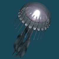 jellyfish 3d model