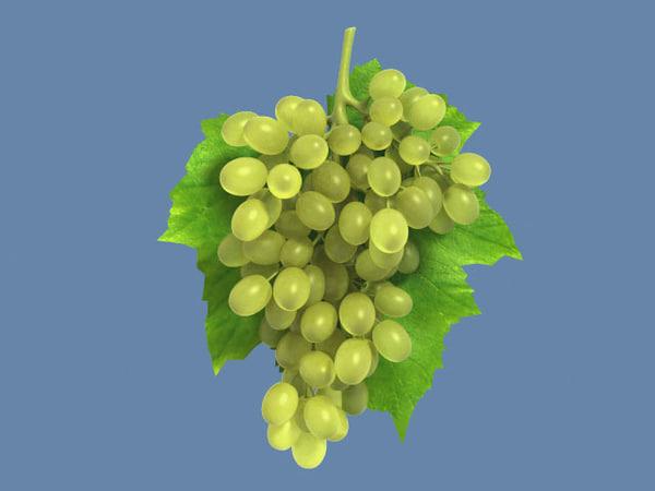 grapes_max.zip