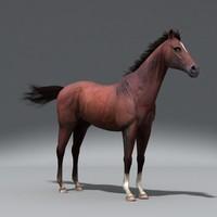Horse.rar