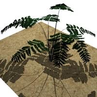 Plant 2a