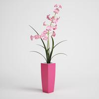 CGAxis flower 04