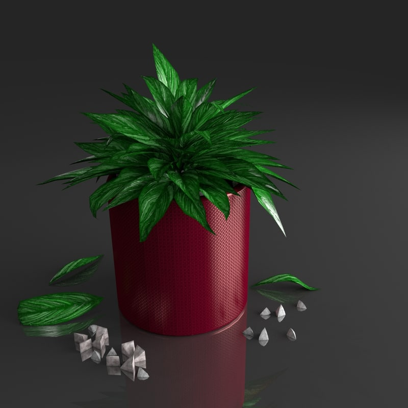 3d model of plant tropical house
