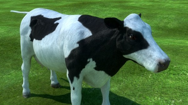 cow animal realistic 3d model