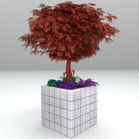 obj japanese maple tree planter