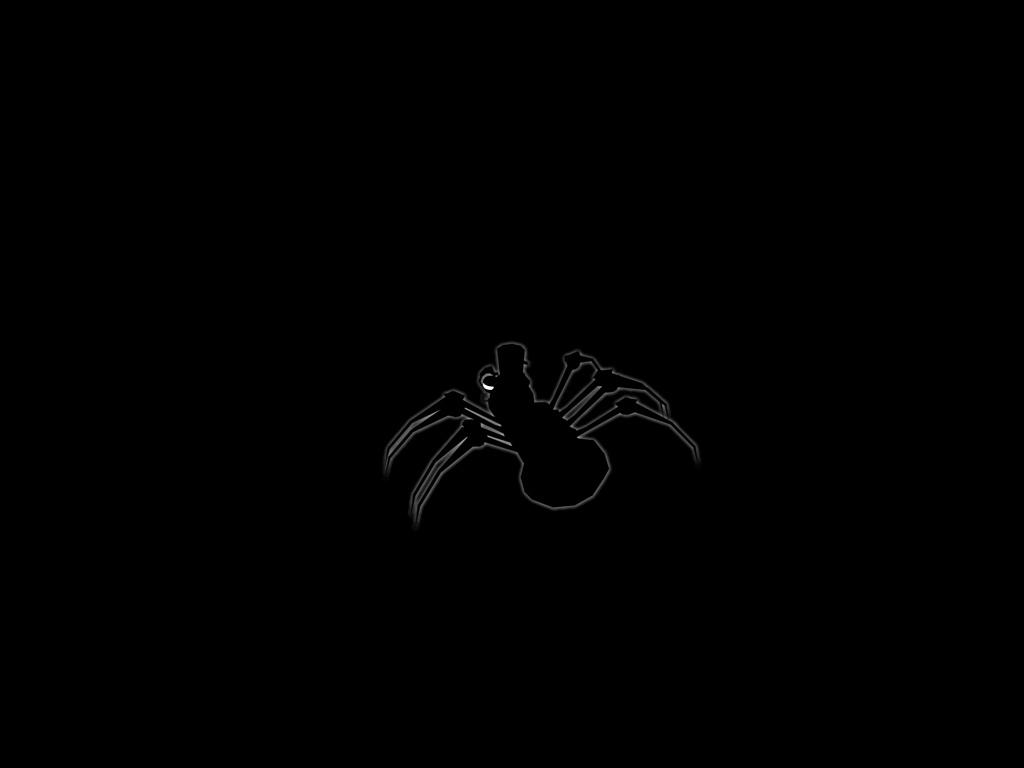 Gentleman Spider