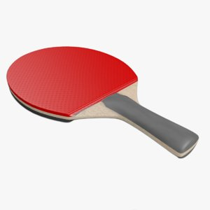 3ds tennis racket ping pong