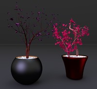 Centerpiece vases and flowers 1