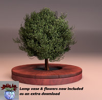 small green leaved tree & wood deck planter