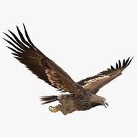 imperial eagle pose 7 c4d