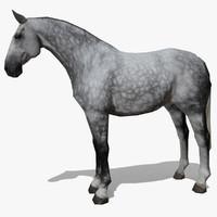 LowPoly Horse B (Dapple grey)