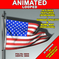 animation flag 3d model
