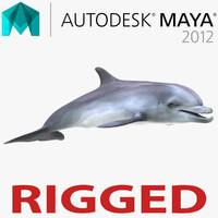 Dolphin Rigged for Maya