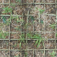 Gridded Ground with Plants [2K Tileable Texture]