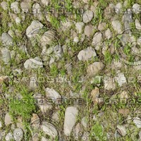 Grass with Gravel 4K Seamless Tileable Texture