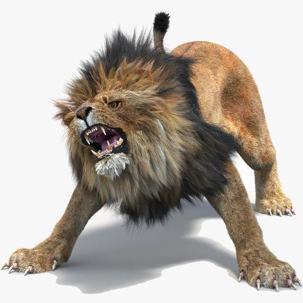 lion 2 fur cat 3d model