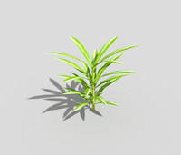 low poly plant