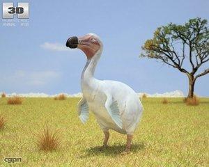 3ds cucullatus dodo raphus
