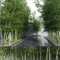 Bamboo Trees 3 (+GrowFX)