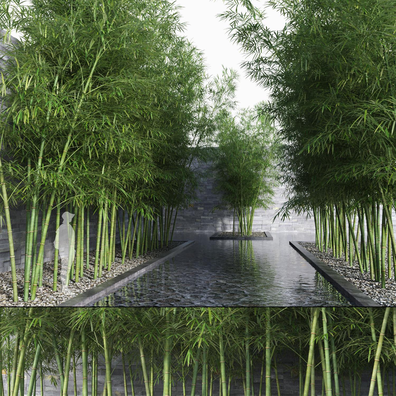 bamboo trees 3 max