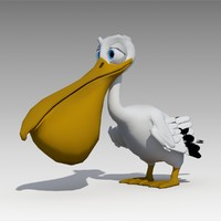 pelican animations 3D model