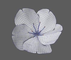 rigged sakura 3D
