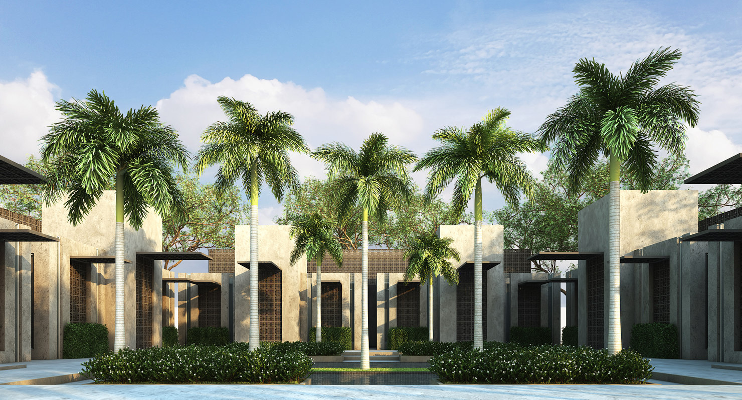 3D model foxtail palm